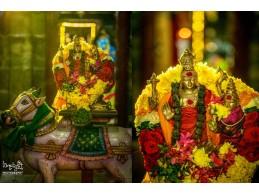 Sri Ramalingaswamy Temple - Jadayupuram