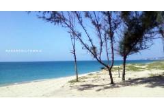 Thekkurichi Beach