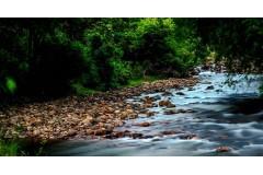 Vattaparai Falls