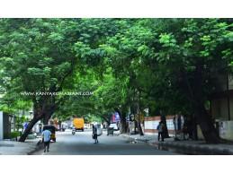 South boag Road, Chennai