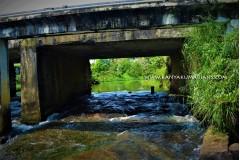 Erachakulam River