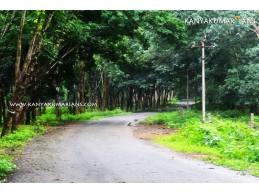 Kalikesam Forest