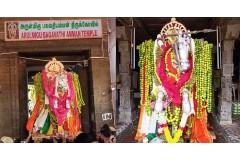 Parivettai Thiruvizha - Kanyakumari