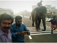 மார்த்தாண்டம் மற்றும் பார்வதிபுரம் மேம்பாலங்கள்...