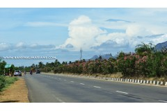 Kanyakumari Highway Beauties
