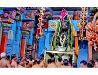 ஆஞ்சநேயர் ஜெயந்தி - சுசீந்திரம்